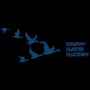 (Polski) Nabor logo krajowy klaster kluczowy